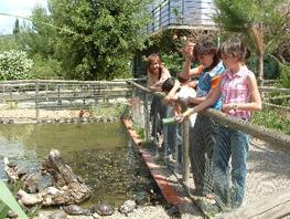 centre de recuperació de fauna salvatge