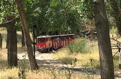 Tren de Palau