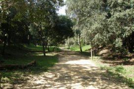 Jardins de Can Jalpí