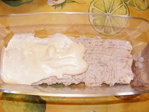 pastis de tonyina