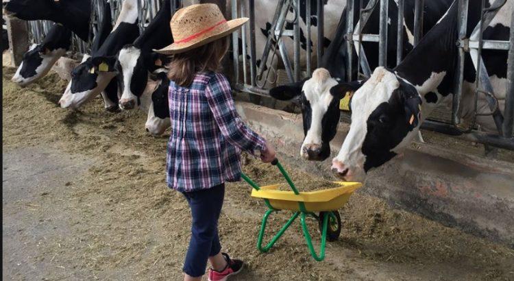 granja de yogures de La Fageda