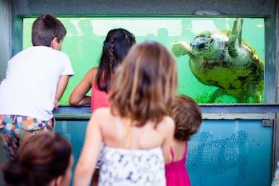 centro de recuperación de animales marinos