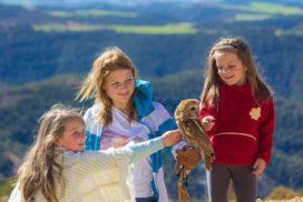 sortir-amb-nens-a-alt-penedes-jardi-dels-ocells