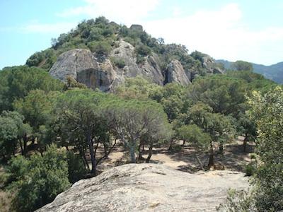 castillo de solius
