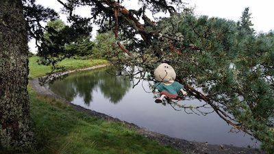 llacs i pantans per anar de ruta amb nens