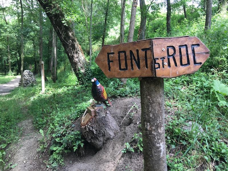 Bosc encantat de Gurb excursions fàcils amb nens