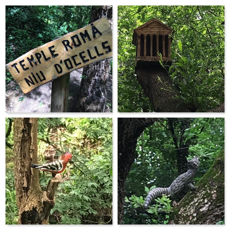 Bosc encantat de Gurb excursions amb nens