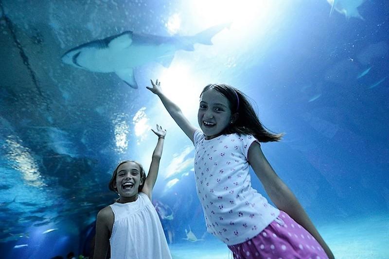 vacaciones en valencia para singles con niños