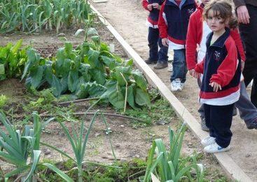 Talleres para niños en Món Sant Benet