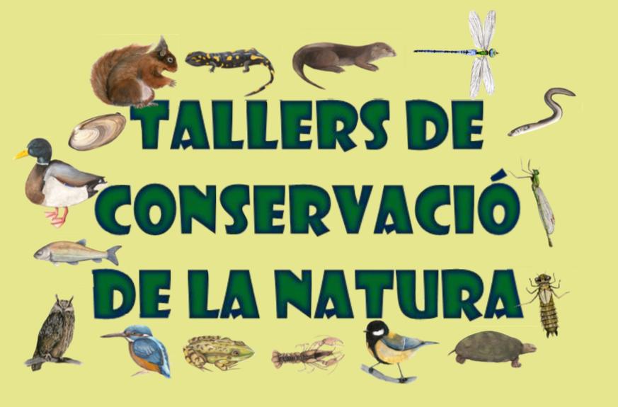 talleres de naturaleza en el Berguedà