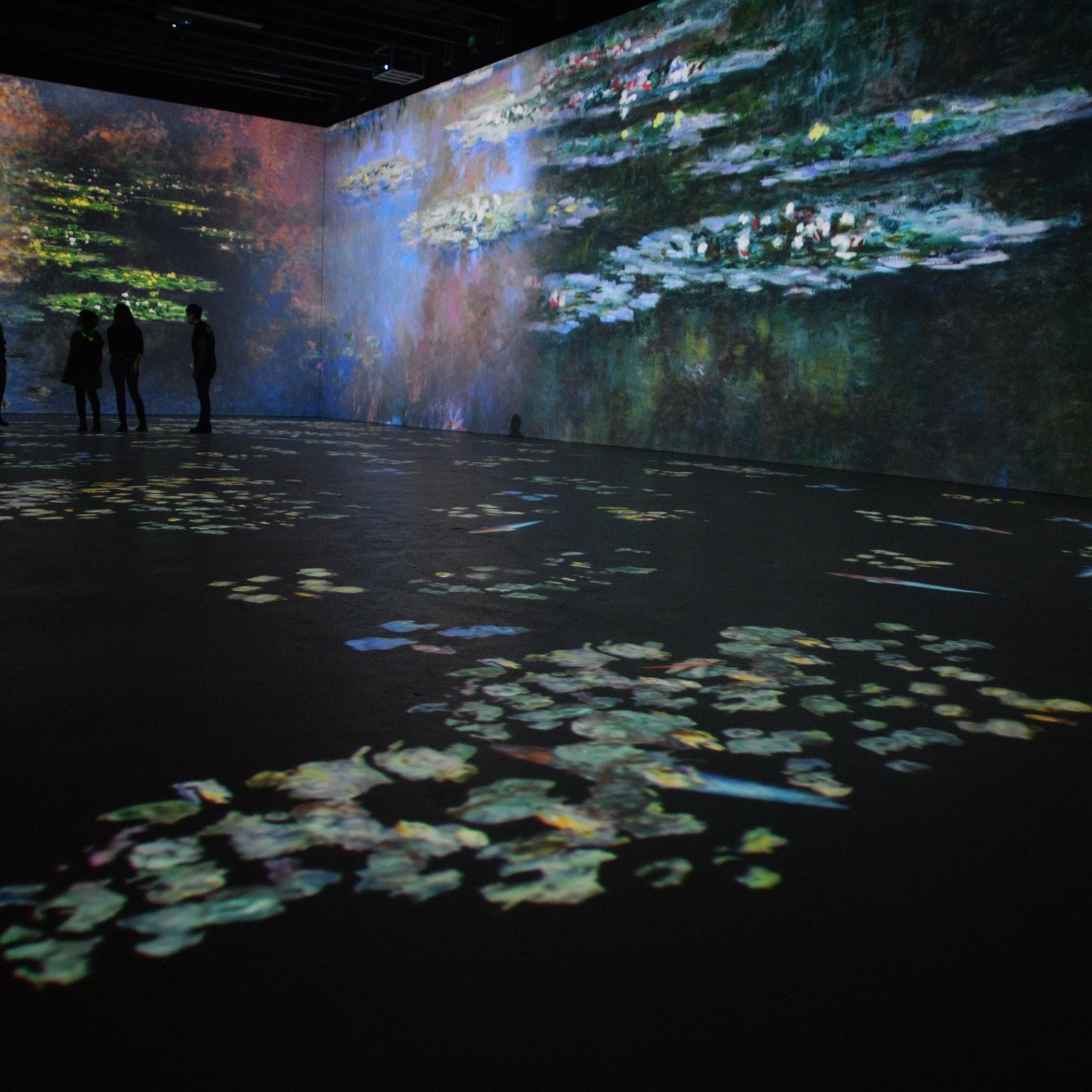 Exposició de Monet