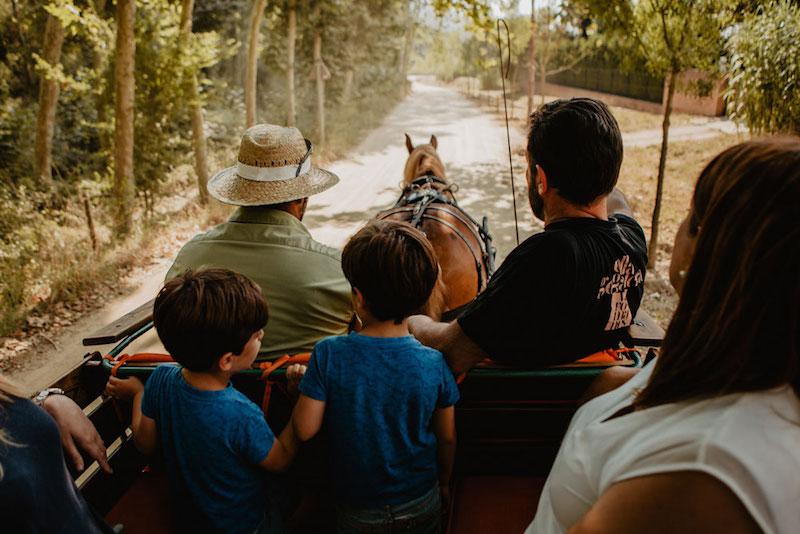 Paseo en carro en Vallromanes