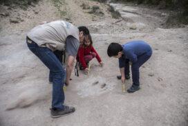 Jaciments arqueològics del Pallars Jussà