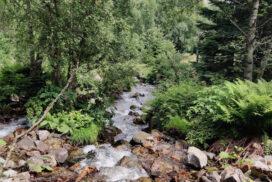 Excursió a la cascada del Gerber